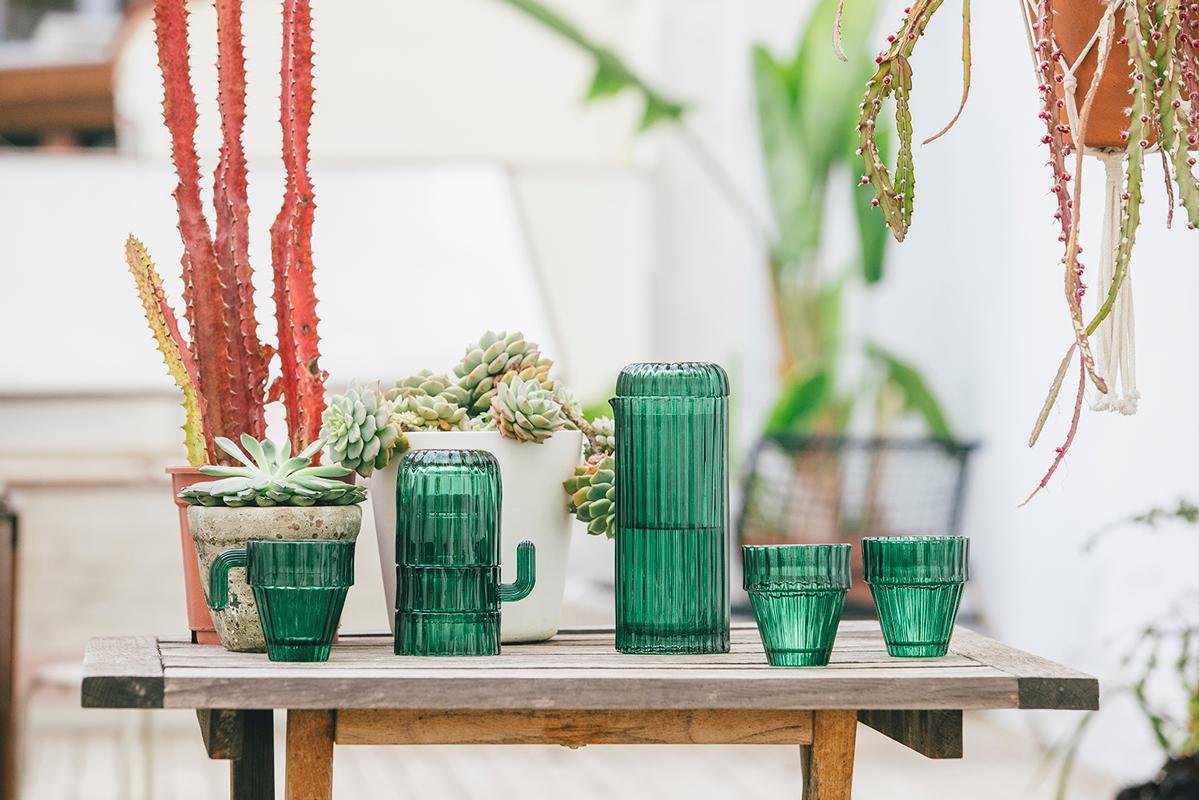 Resultado de imagen de vasos saguaro