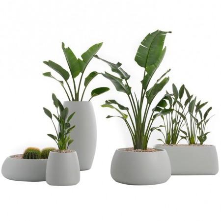 Gobi Plant Pot