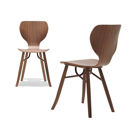 Tulipani Walnut Chair